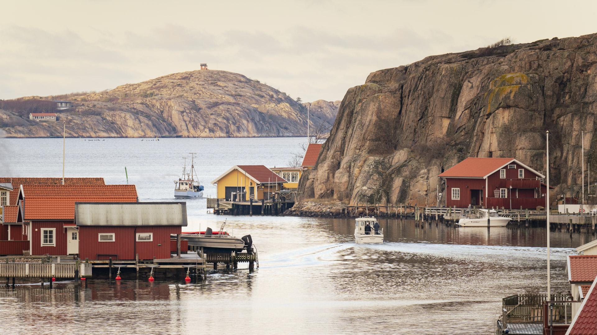 Kustens Trä - Trä för kustlandskapet